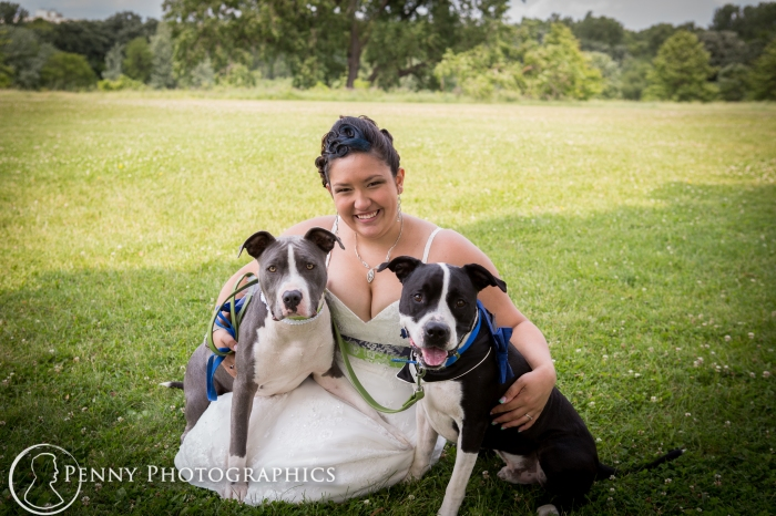 bride-with-two-dogs